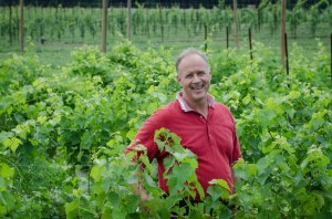 Carl DiManno among his Virginia Vines